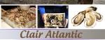 article - Huîtres et autres saveurs des côtes françaises livrées à domicile à Singapour !