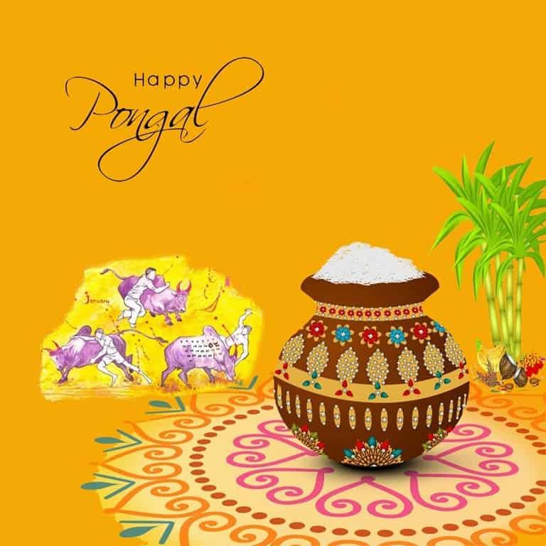 image-Pongal Festival