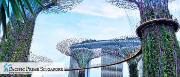 economiser-assurance-sante-singapour